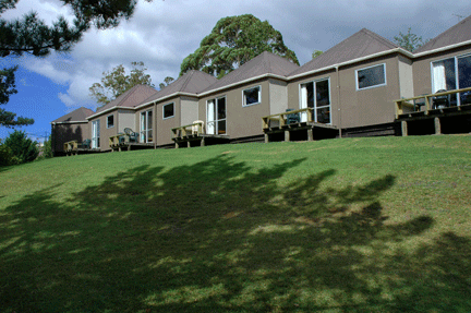 Large cabin exterior