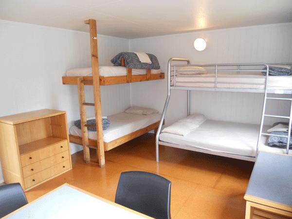 Medium cabin beds