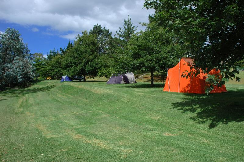 Motor Camp - premium tent sites