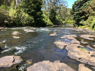 River running along the bottom of Kerikeri Holiday Park