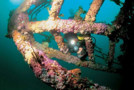 Rainbow Warrior Scuba Diving