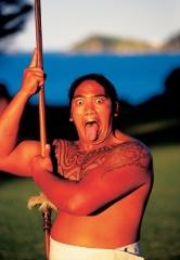 Maori Warrior - Waitangi