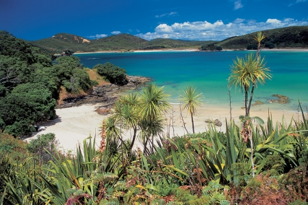 Matai Bay - Karikari Peninsula - 1 hr from Kerikeri