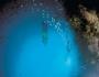 Rainbow Warrior Diving