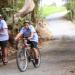 Pou Herenga Tai –Twin Coast Cycle Trail
