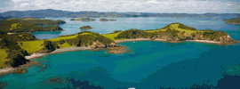 Bay of Islands Cruises & Dolphins