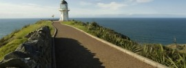 Cape Reinga Tours